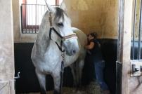 Massage streching avec Karin