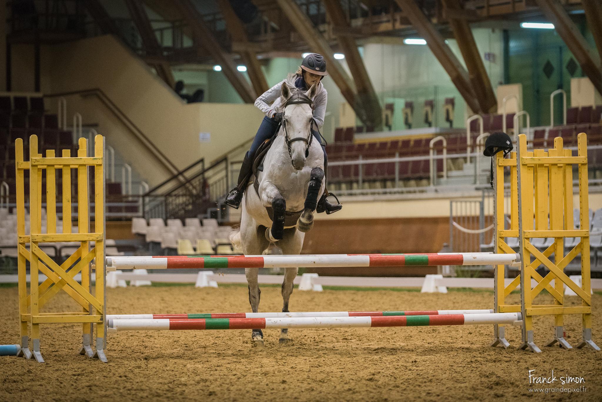 Rencontres equitation