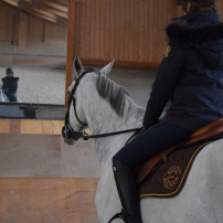 Découverte des installations de l'ecole nationale d'équitation de saumur