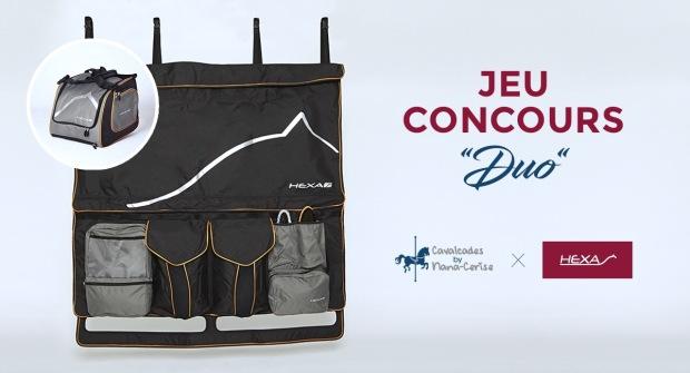 Jeu concours Facebook Cavalcades by Nana-Cerise et Hexa